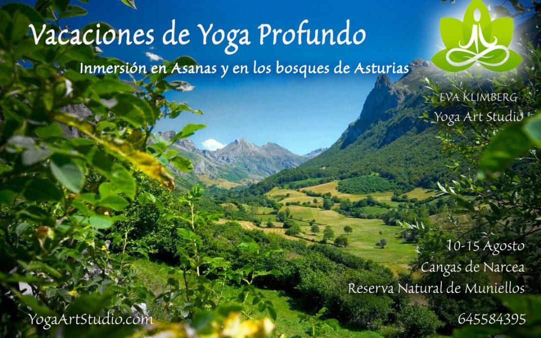Imprescindible la Sadhana Profunda: ¿Por qué unas Vacaciones /Retiro de Yoga?